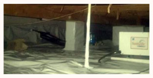 Crawl Space Mold Removal  Safety Harbor FL